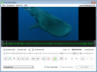 Free Video Editor von DVDVideoSoft